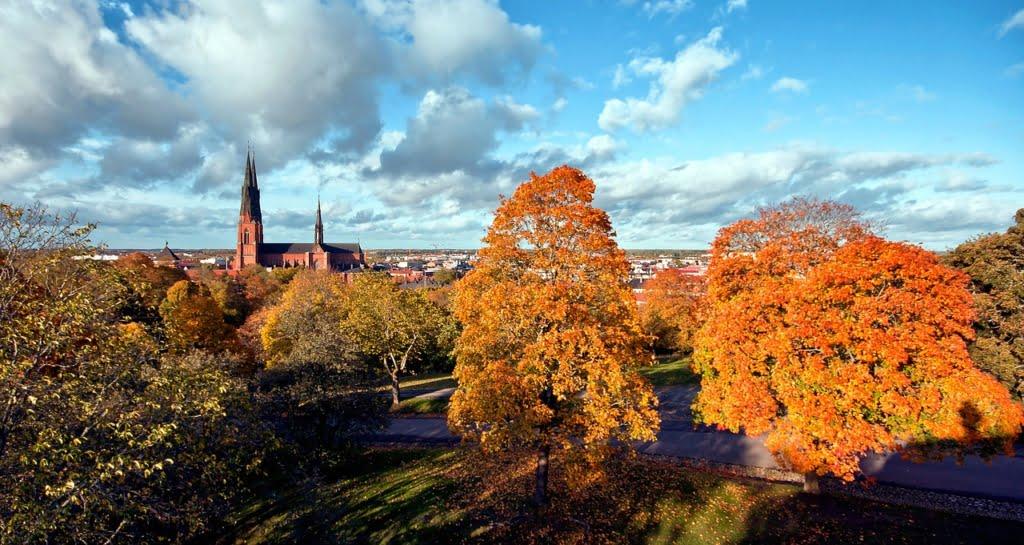 Begravningsbyrå Uppsala